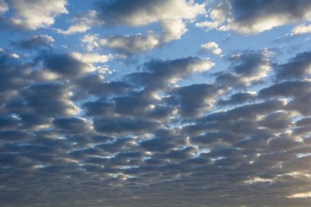 white clouds: White clouds in a blue sky