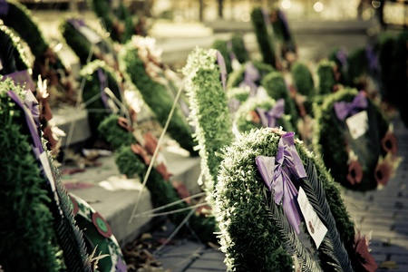 close up photo of wreath on remembrance day 4 photo