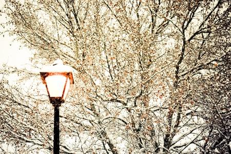 gorgeous snow grains and winter street light photo