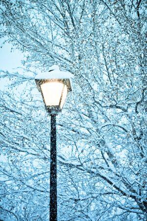 street lamp: gorgeous snow grains and winter street light Stock Photo