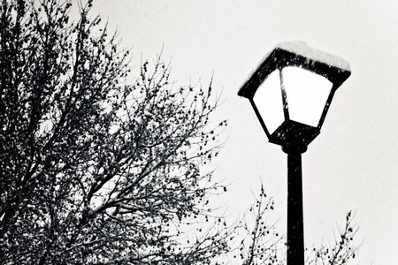 gorgeous snow grains and winter street light Stock Photo - 8897442