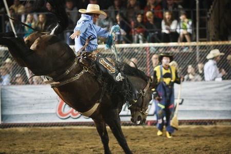 Rodeo Stock Photo - 10522942