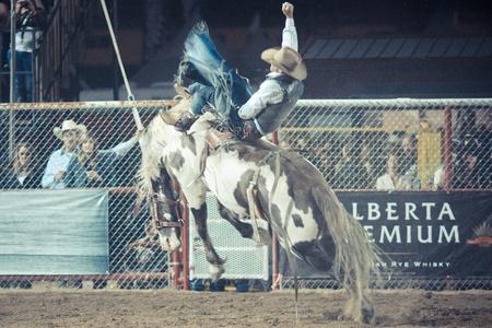 Rodeo Stock Photo - 10522950