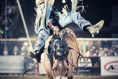 rodeo cowboy: Rodeo