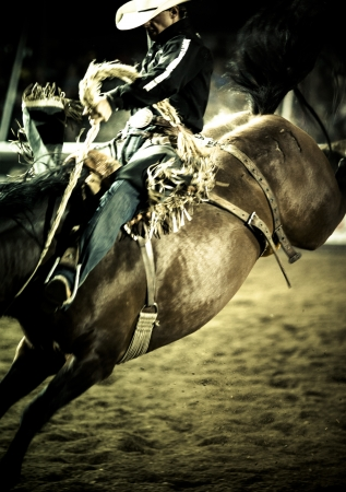 bucking bull: IPE 2012 Armstrong Dodge Day Rodeo 1 9 12 Editorial