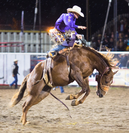 Rodeo competition in Armstrong, British Columbia, Canada