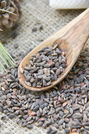 fabrick: A olive wooden spoon full of aleppo pine seeds.Close up