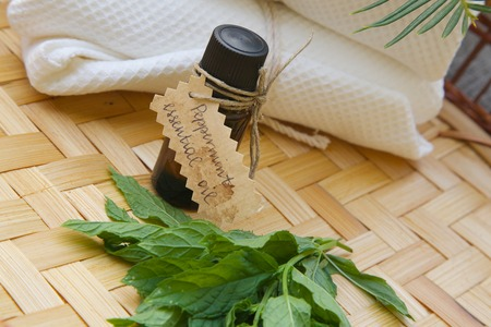 A dropper bottle of peppermint essential oil. Fresh peppermint leaves in front view photo