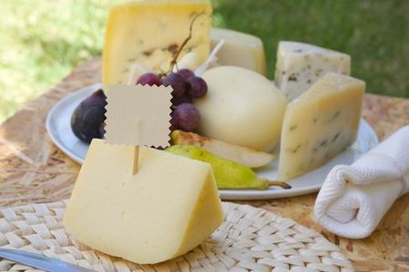 woven surface: Leche de oveja italiano de quesos venta primo en una superficie tejida con la etiqueta. Espacio libre de un texto. Frutas y diferentes tipos de queso en el fondo.