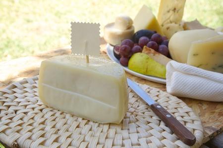 woven surface: Italiano -pecorino queso de oveja en la superficie tejida