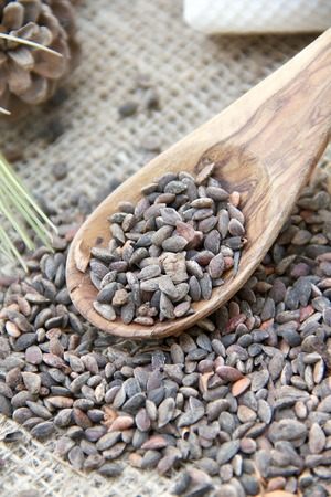 oxidative: Aleppo pine kernels in the olive wood spoon on the sackcloth