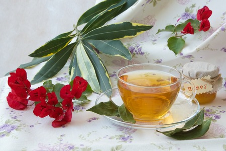 relaxant: A glass cup of herbal tea with bay leaf and honey on a flower print table cloth Stock Photo