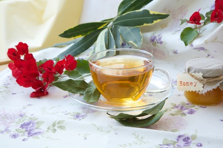 spasmodic: A glass cup of herbal tea with bay leaf and honey on a flower print table cloth Stock Photo
