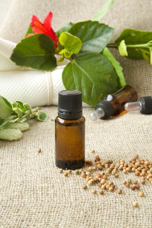 spasmodic: A dropper bottle of white pepper essential oil. White pepper in the background.