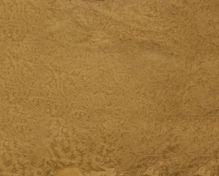 distressed paper: Distressed paper in liquid coffee - background