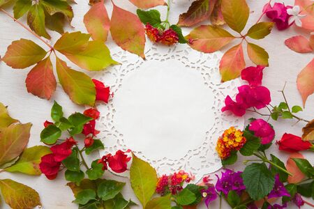 text free space: Flower composition in the form of a circle on a white surface. Free space for a text Stock Photo