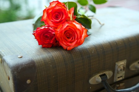 recollections: A bunch of roses on an old vintage suitcase