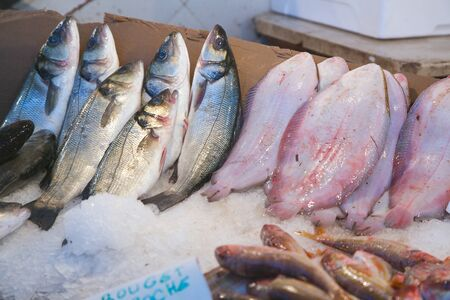 natural ice pastime: Fresh fish at the fish market: sea bass and flat fish in the ice. Stock Photo