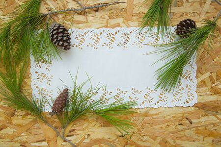 floristic: Floristic composition of pine tree branches and conifer cones- postcard. Free space for a text.