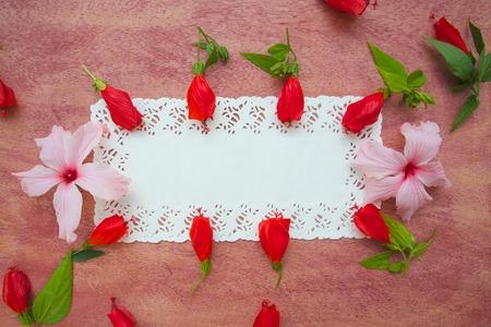 fiori di ibisco: Composizione floristica di ibisco cartolina flowers-. Spazio libero per un testo.