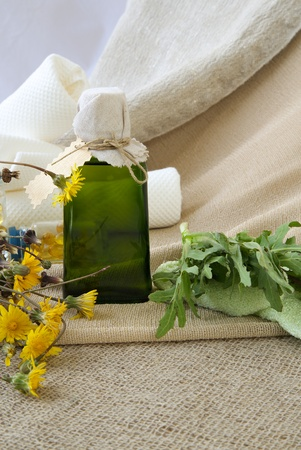 microbial: A glass bottle of dandelion oil on a sackcloth. Dandelion blossoms in the background
