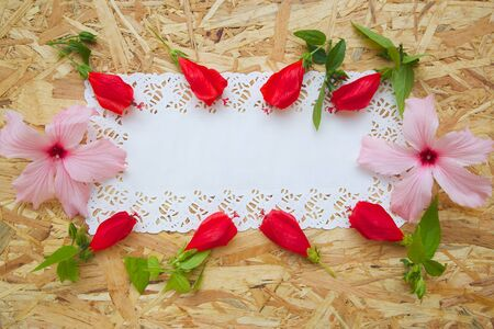 text free space: Floristic composition - postcard. Free space for a text. Stock Photo