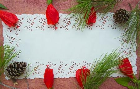 fiori di ibisco: Composizione floristica di fiori di ibisco e rami degli alberi di pino - cartolina. Spazio libero per un testo Archivio Fotografico