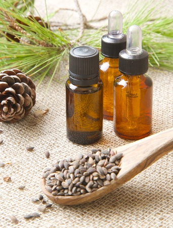 pine kernels: Aleppo pine essential oil
