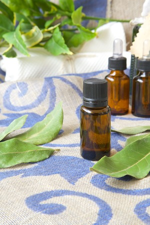 antispasmodic: A dropper bottle of bay leaf essential oil. Bay leaves in the background