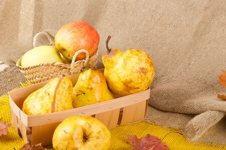 carotenoid: Yellow pears and pink apples in a wooden basket on a decorative sackcloth