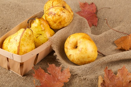 carotenoid: Yellow pears in a wooden basket on a decorative sackcloth