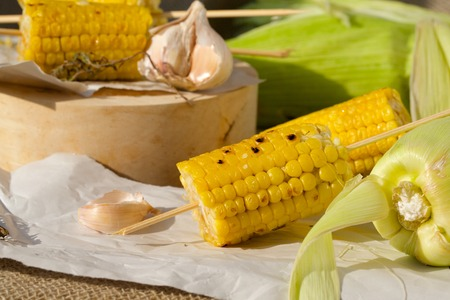 insoluble: Grilled corn skewers on a piece of paper. Stock Photo
