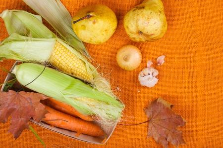 sackcloth: Fruits and vegetables on an orange sackcloth
