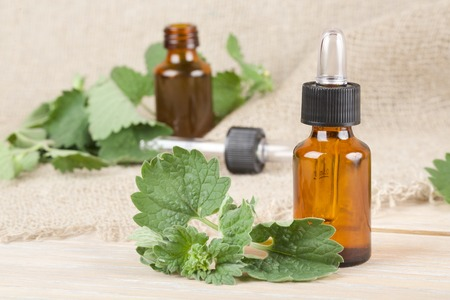 carminative: A dropper bottle of melissa essential oil on a grey wooden surface