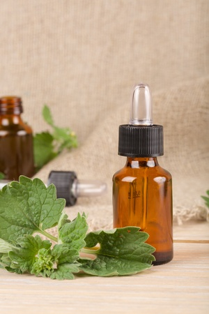 antispasmodic: A dropper bottle of melissa essential oil on a grey wooden surface