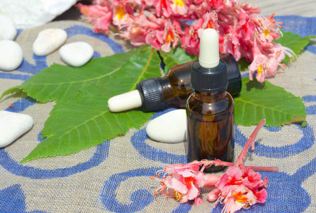 horse chestnut seed: A dropper bottle of chestnut blossoms extract on a sackcloth Stock Photo