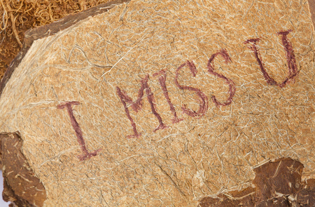 i miss you: I miss you is written on a coconut shell.Closeup