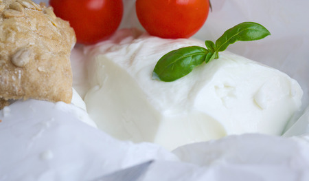 stracchino: Italian cheese - stracchino with basel leaves. Closeup Cherry tomatoes in the background.