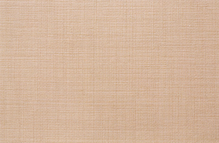 embossed paper: Beige coloured embossed paper surface. Background