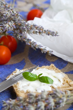 stracchino: Whole grain rolls with Italian cheese-stracchino on a decorative sackcloth. Cherry tomatoes in the background. Stock Photo
