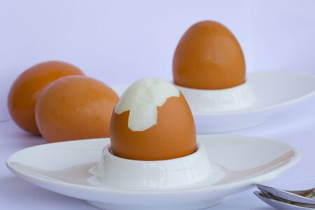 lecithin: Boiled egg on a white egg holder. Closeup Stock Photo