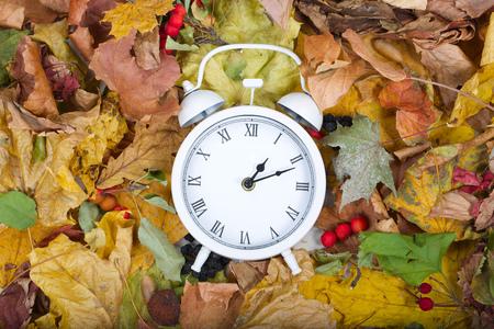 White vintage clock on dried leaves.