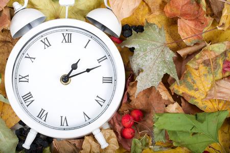 White viintage clock on dried leaves.  Zdjęcie Seryjne