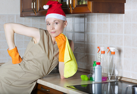 Young cleaning lady in the kitchen Zdjęcie Seryjne