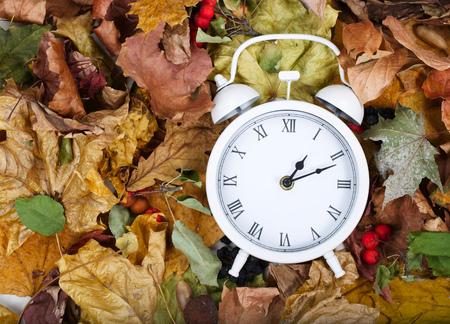 Biały zegar viintage na suszonych liściach.