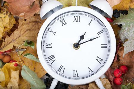White viintage clock on dried leaves.  Stock Photo