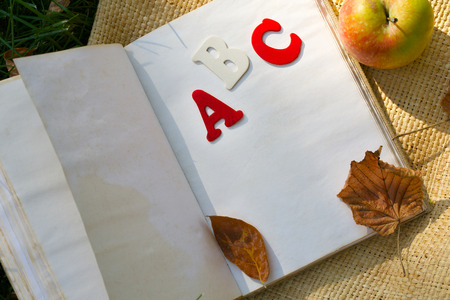 Book and a red apple on a green grass. Closeup