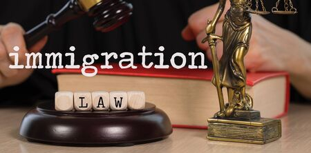 Words IMMIGRATION LAW composed of wooden dices. Wooden gavel and statue of Themis in the background. Closeup