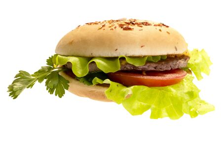 hamburger with vegetables Stock Photo - 4896581