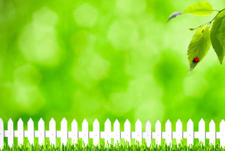 Summer backgrounds with bokeh, grass and white fence photo